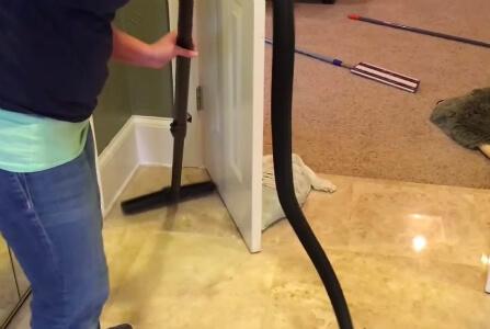 уборка квартир после животных